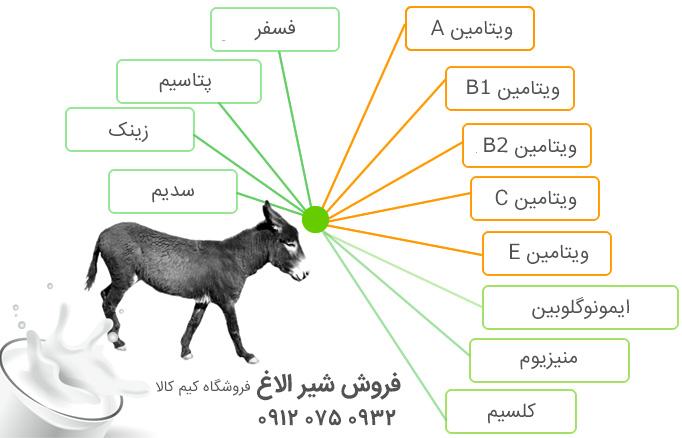 ویتامین های موجود در شیر الاغ