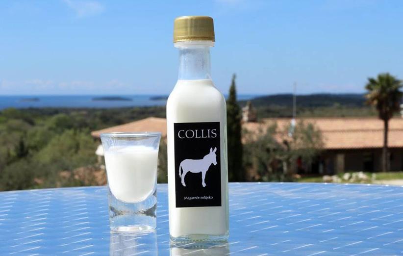 فواید شیر الاغ برای سلامتی بدن انسان