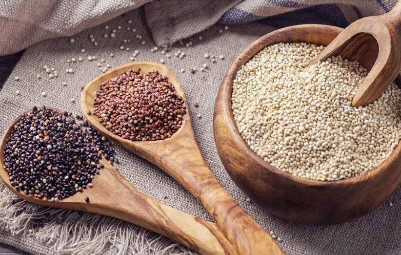 گیاه کینوا چیست | خواص و فواید کینوا
